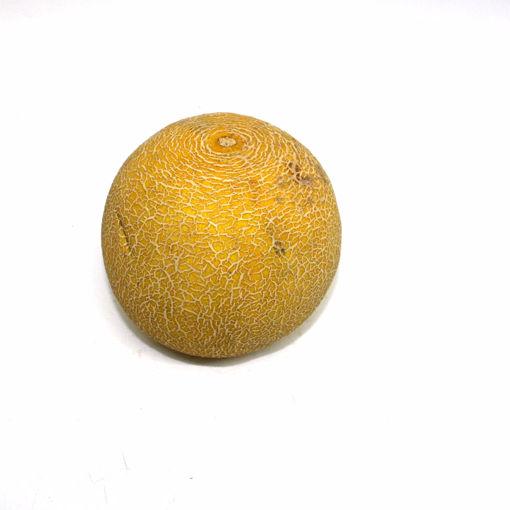 Picture of Melon Galia