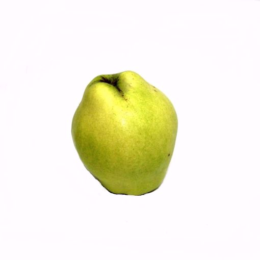 Picture of Quince Single
