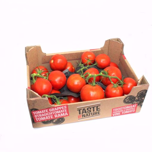 Picture of Vine Tomato Box (5Kg)
