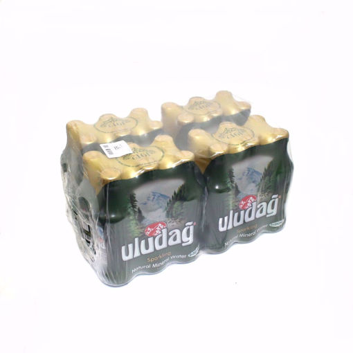 Picture of Uludag Sparkling Water 24X200ml