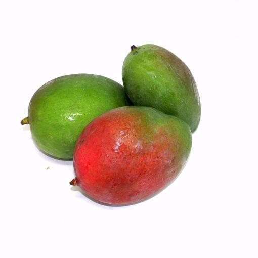 Picture of Mango Single