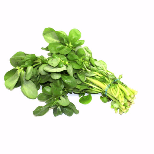 Picture of Lupsana / Water Cress Bunch