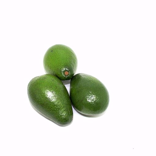 Picture of Avocado 2 Pack