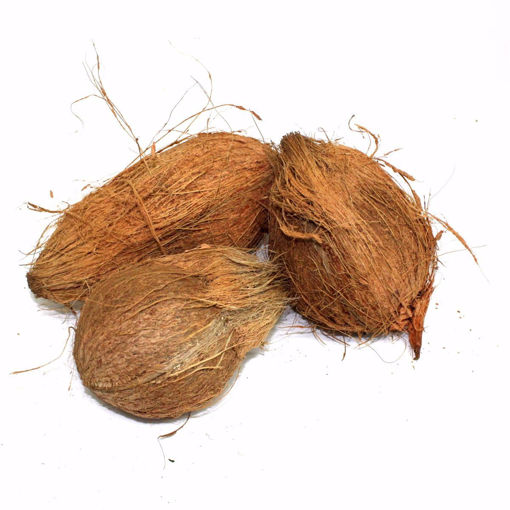 Picture of Coconut Single
