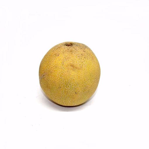 Picture of Galia Melon Single