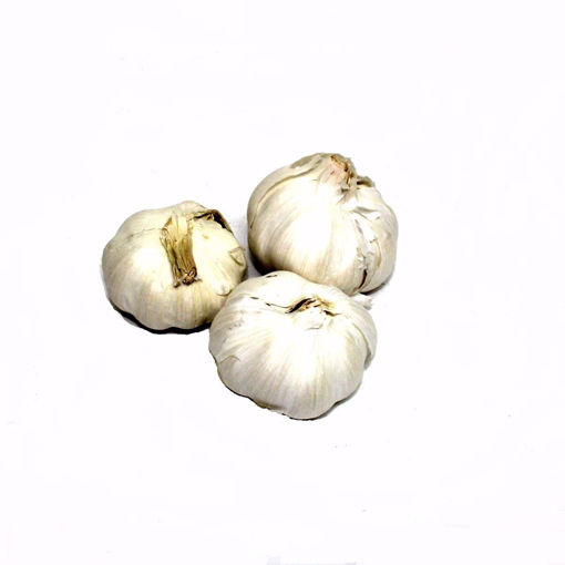 Picture of Garlic Single