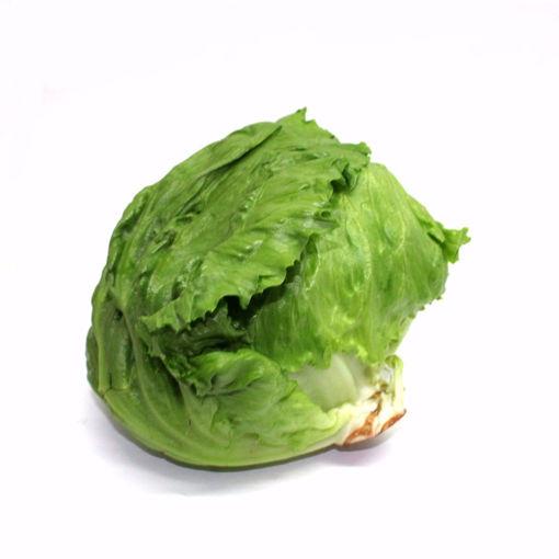 Picture of Iceberg Single