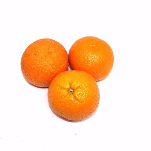 Picture of Orange 3 Pack