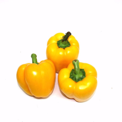 Picture of Yellow Cup Pepper 250Gr (Min1)