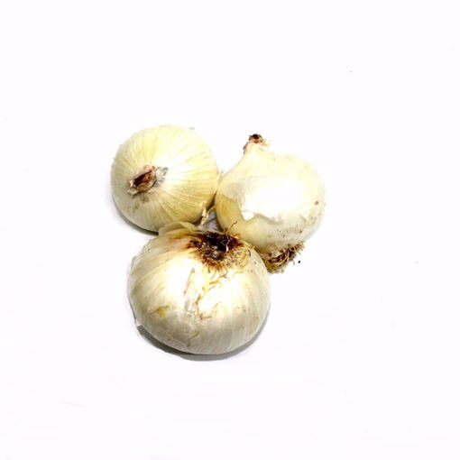 Picture of White Onion 500Gr (Min 3)