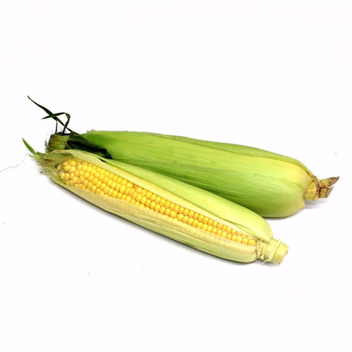 Picture of Sweetcorn Single