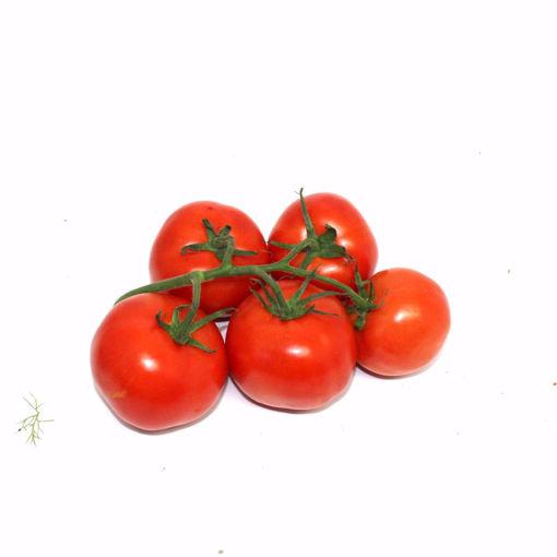Picture of Vine Tomato 800Gr