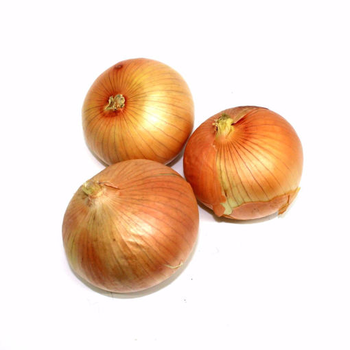Picture of Spanish Onion Single (Min. 500Gr)