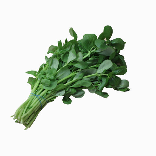 Picture of Purslane Each